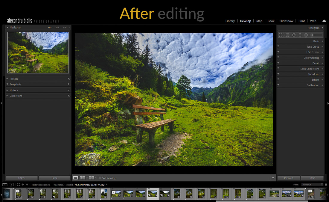 curs foto online site-Before and after Lr Print Screen-1002-after