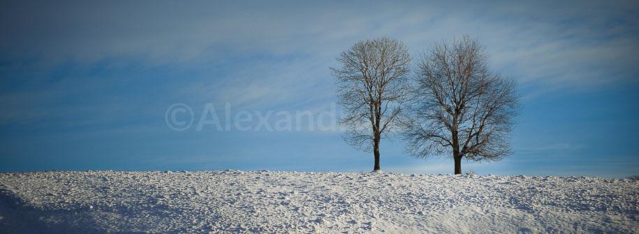 Forever-in-love-peisaj-iarna-PREVIEW-slider-shop