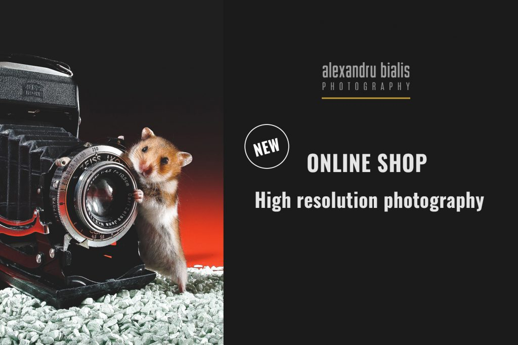 Online SHOP stock photography-slider-2-1